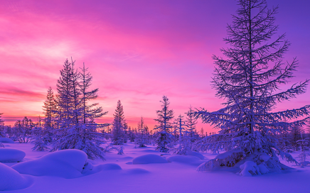 Palette di colori natalizi