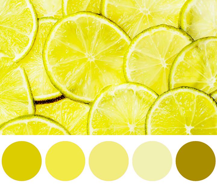 La palette dei colori: i colori monocromatici sono sfumature e tonalità dello stesso colore
