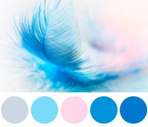 Palette di colori per il settore benessere e cura della persona